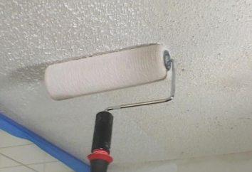 Blanquear el techo de la cal vieja. ¿Es posible blanquear el techo de la cal vieja?