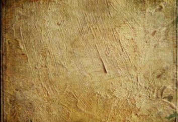 Papier aus Holz: aus dem es gemacht wird