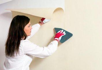 Colle pour les joints de papier peint: mode d'emploi, caractéristiques, avis et commentaires