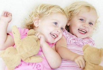 Os gêmeos idênticos e fraternais – qual é a diferença?