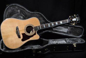 Gitara akustyczna Dreadnought: historia, zwłaszcza analogi