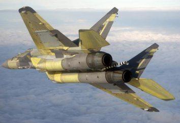 Confronta MiG-29 e Su-27 (foto)