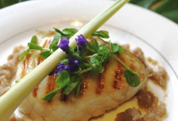 Ciò che i piatti possono essere preparati dai filetti di merluzzo