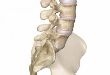 Lendenwirbel: Behandlung und Rehabilitation. Lendenwirbelsäule: Beschreibung der Struktur. und Behandlung