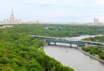 Wszystko, co musisz wiedzieć o podróży na rzece Moskwa