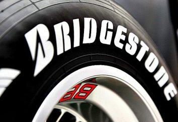 """Ruote """"Bridgestone"""": tipi, caratteristiche, opinioni"""