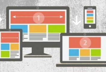Aplicación de la regla clara de CSS: simple y conveniente