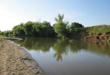 Sviyaga – Russian River: Beschreibung, Merkmale, Fotos
