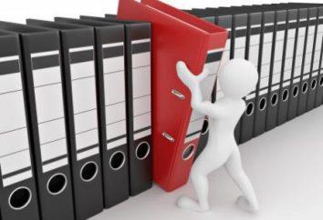 Kto wydaje księgi rachunkowe dla małych firm. Sprawozdania finansowe małych przedsiębiorstw