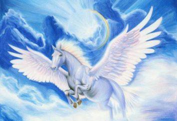 Dowiedz się, jak narysować konia ze skrzydłami i bez