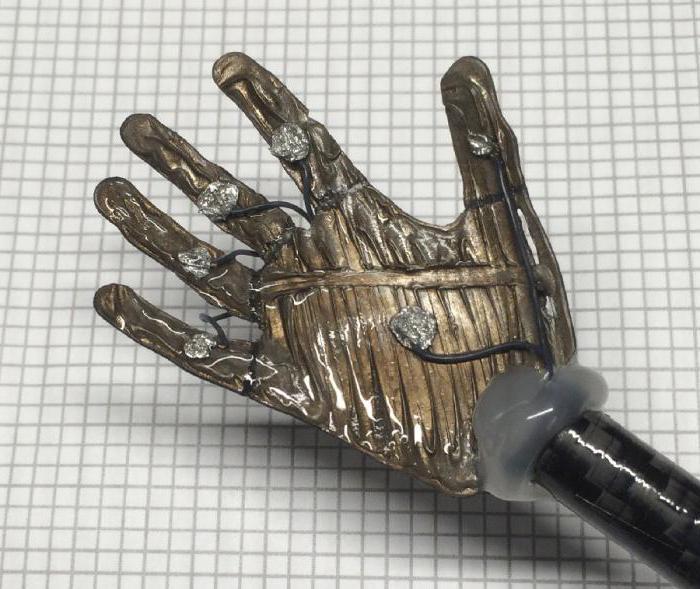Künstliche Muskeln mit den Händen: die Herstellung und Eigenschaften