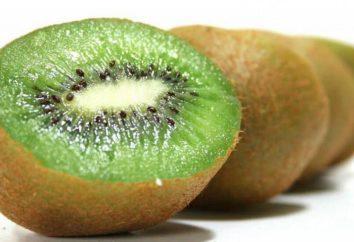 Chinesische Stachelbeere – Kiwi Vitamine, Nutzen für den Organismus. Wie Kiwi essen