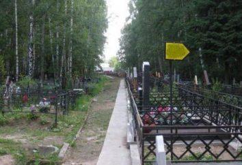 Niezwykłe Dolgoprudnenskoe cmentarz