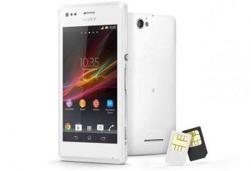 Przegląd smartfonu Sony Xperia M Dual