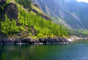 Belo descanso em Baikal por selvagens