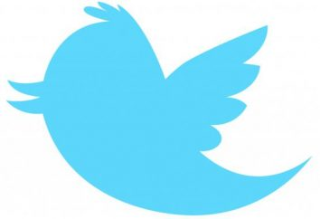 ¿Cómo promover una cuenta de Twitter – ventajas y desventajas de los diferentes métodos
