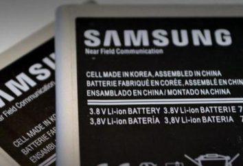 ¿Cómo sé que la capacidad de la batería del teléfono – instrucciones paso a paso, las características y las revisiones