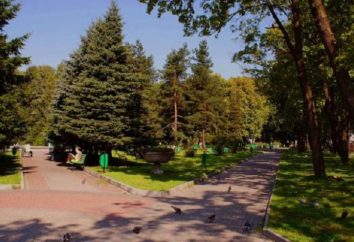 Kaliningrad. Central Park: la storia della creazione