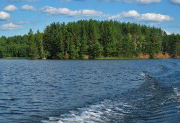 Lake Vella na região de Novgorod
