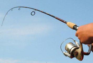 Lo que para dar el pescador? ¿Cómo elegir el regalo adecuado?