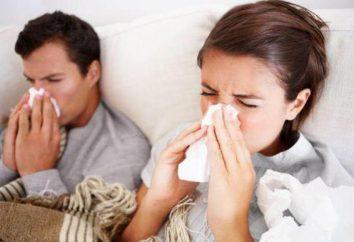Come trattare rapidamente un raffreddore a casa? consulenza e popolari ricette del medico