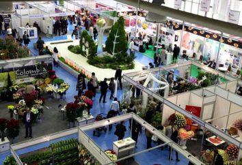 Czym jest EXPO: cała zabawa show. EXPO-2017 w Astanie