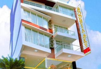 Sophia Sky Hotel 2 * (Vietnam, Nha Trang): recensioni foto e turisti