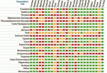 Rodzaj ryb akwariowych i kompatybilności różnych typów (patrz tabela)