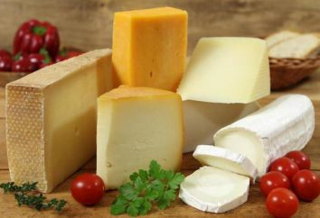 Que pouvez-vous faire sortir de fromage? Recettes de fromage