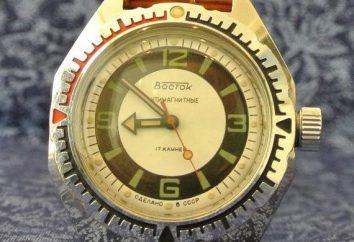 """Tempo per un'avventura. Guarda """"Vostok Anfibio"""""""