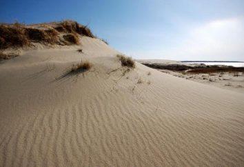 Dune Efa: Attraktionen, Beschreibung, interessante Fakten und Bewertungen