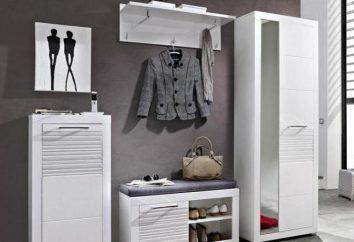 Jak odebrać meble w korytarzu w nowoczesnym stylu? Wybór szafa