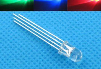 LED – co to jest? Zasada działania diody LED