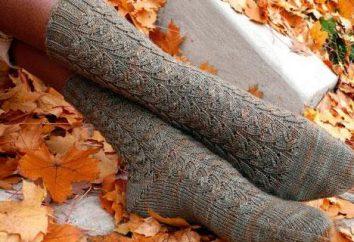 Netzs Socken Speichen: scheme. Muster für Socken