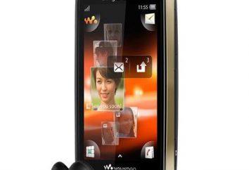Sony Ericsson WT19i: cechy i firmware