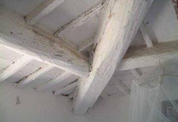 Branquear o teto: como evitar problemas desnecessários