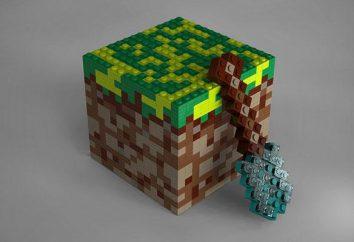 Wie sich die Dinge in Minecraft zu tun, und was sind die Möglichkeiten, dies zu tun?