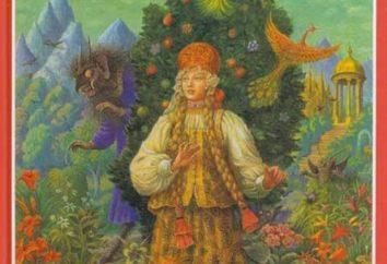 Rappelez-vous les histoires de vos enfants préférés. Résumé: « La fleur écarlate » S.T.Aksakova