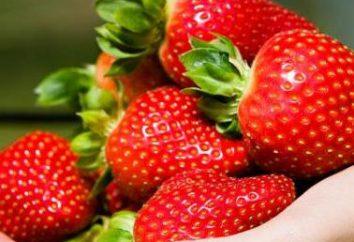 Saborosa e saudável: o que as vitaminas contidas nos morangos