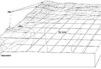 planta – es … Los planes difieren del mapa?