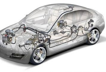 Système de freinage: Le dispositif et principe de fonctionnement