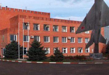 brique Novokubansky: caractéristiques, performances, coût