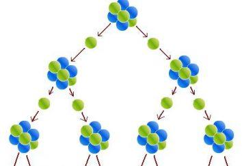 reacción nuclear en cadena. Condiciones de la reacción en cadena nuclear