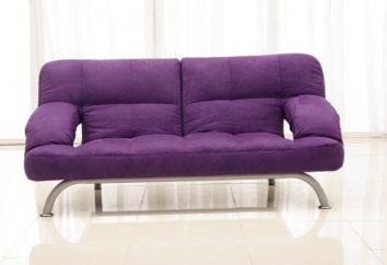 """Die ursprüngliche Lösung der üblichen Design – Sofas """"Klick-Klyak"""". Bewertungen"""