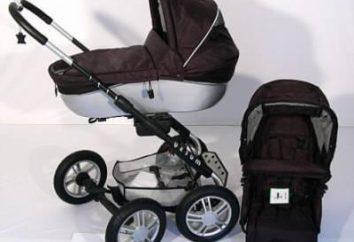 Fauteuil roulant « Mutsu » – les meilleurs parents actifs d'aide