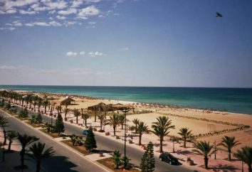Hôtel El Mouradi Hammamet 4 * Menzah (Tunisie, Hammamet): description, photos, commentaires