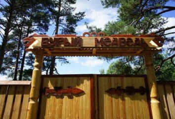 """Village de vacances """"Brown Bear"""" dans la région de Novgorod: photos et avis"""