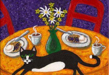 Jak odzwyczaić kota wspiąć się na stole? Czy to możliwe, aby odzwyczaić kota wspiąć się na stole?