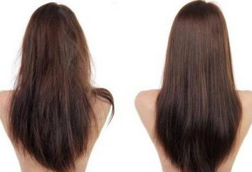Comment choisir un lisseur cheveux: un examen des meilleurs modèles et commentaires