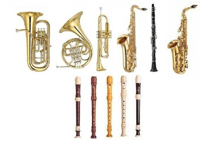 Tipi di strumenti musicali una breve descrizione - Diversi tipi di musica ...